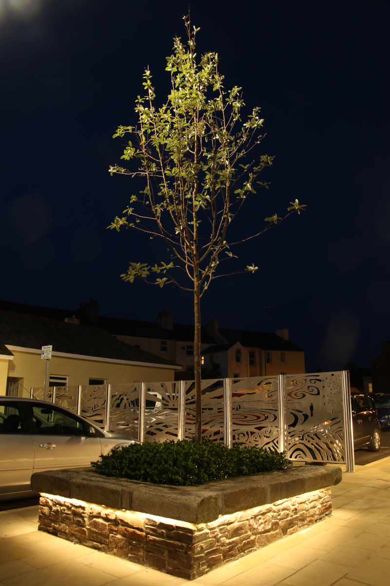Peel Town Square Regeration Tree in Planter lit at night