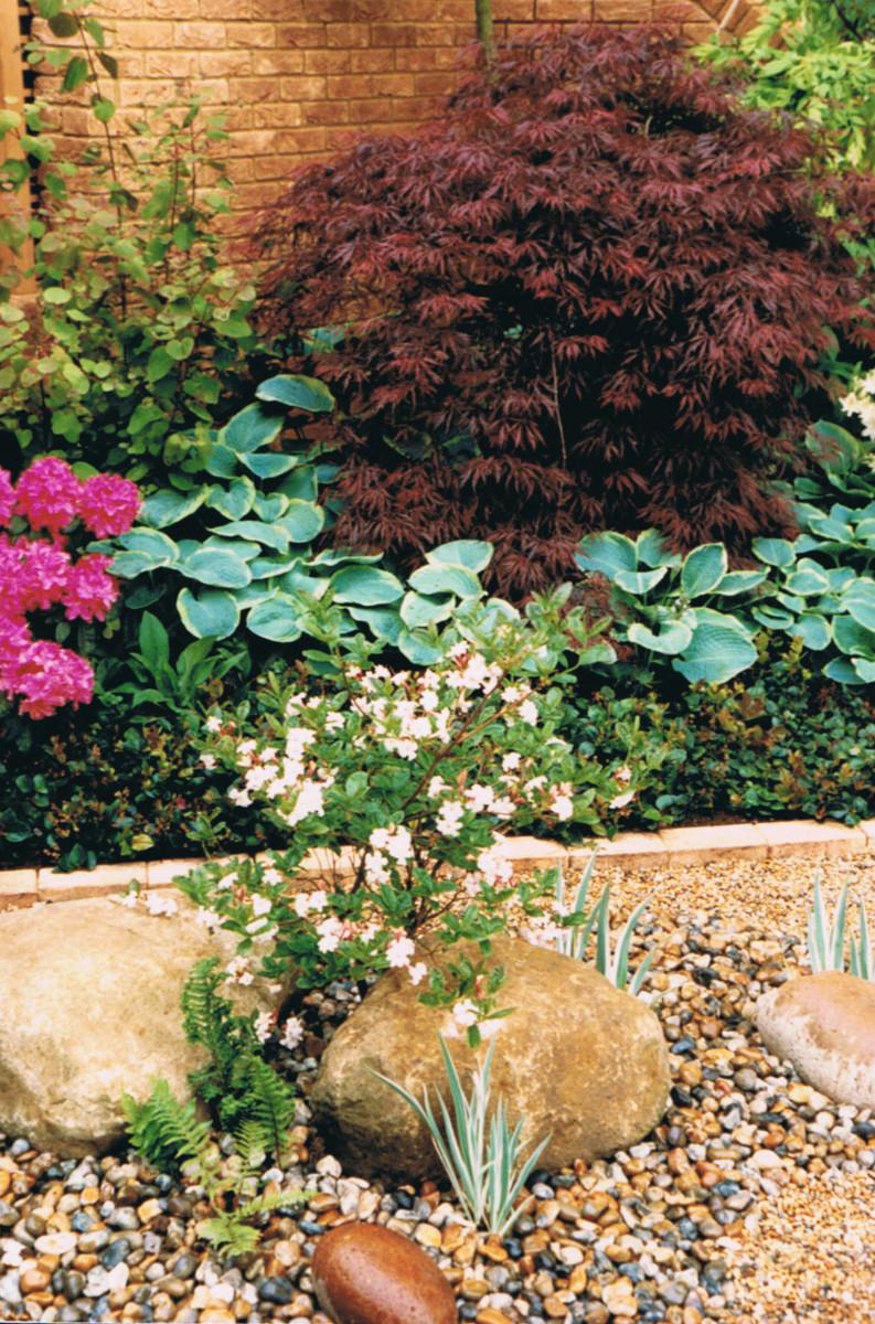 Chelsea 1987 oriental garden plant detail
