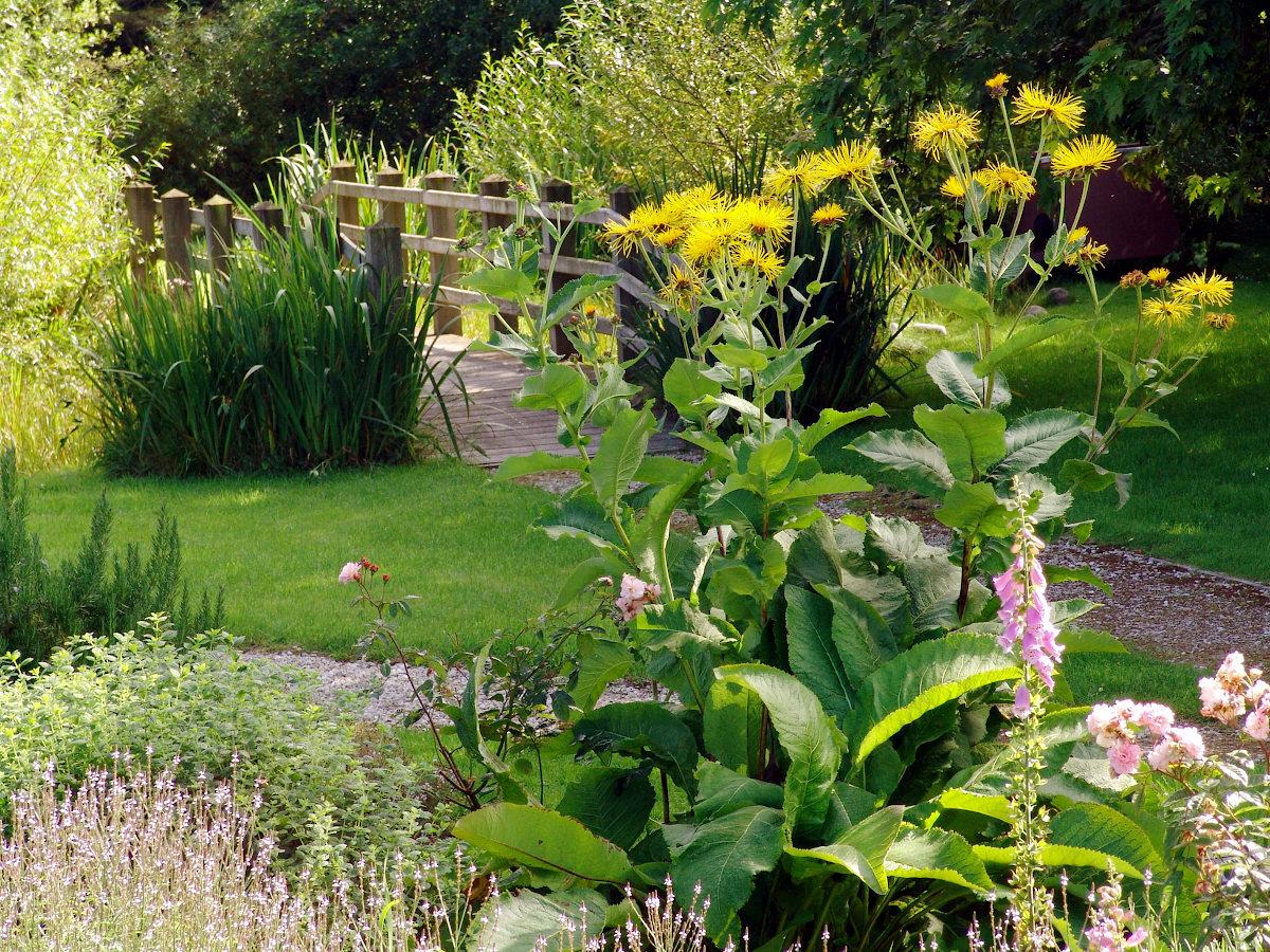 Rushen Abbey Gardens flowers