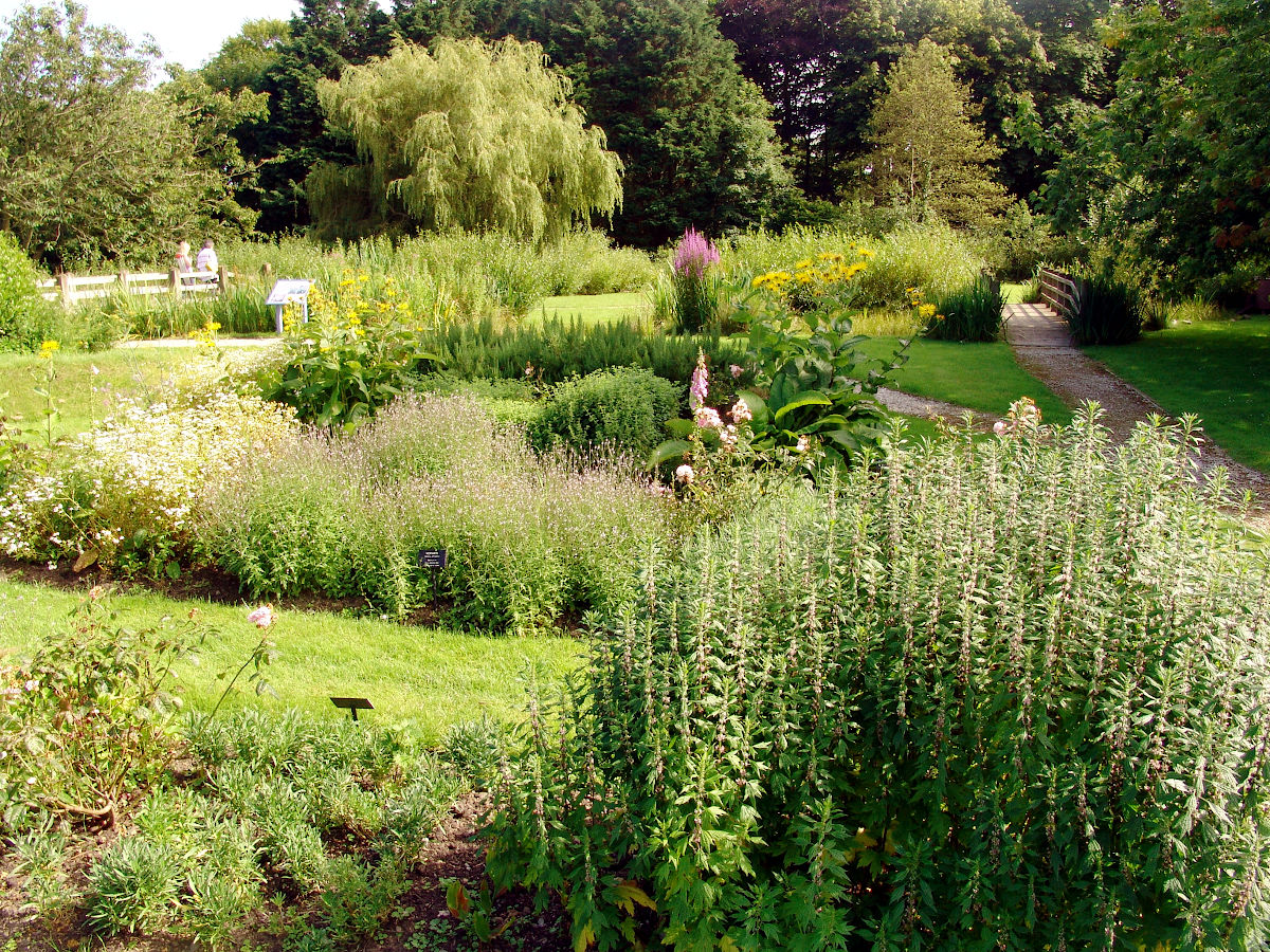 Rushen Abbey Gardens planting landscape design