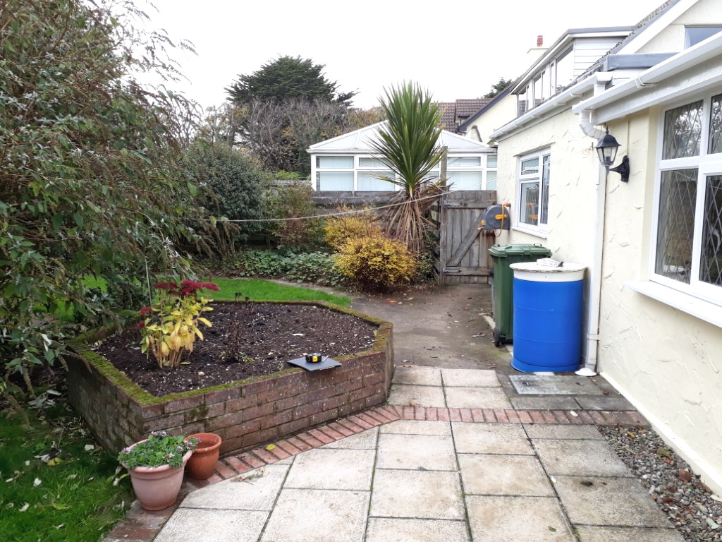 Overgrown garden with old patio and irregular shaped planting bed